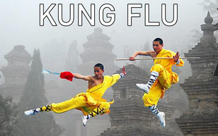 KungFlu3.jpg