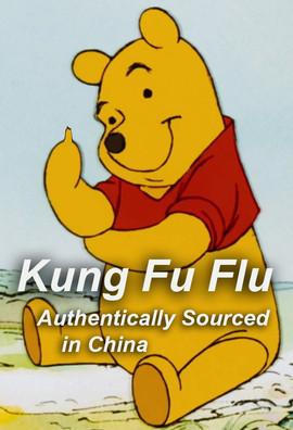 China_KungFlu.jpg