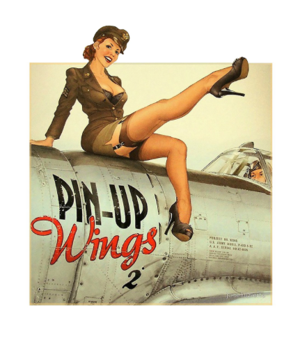 Sticker Pin-UP Wings