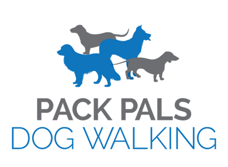 Welcome to our Pack Pals dog walking blog.