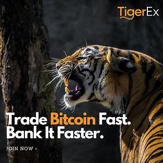 TigerEx Social Media Post - PNG.png