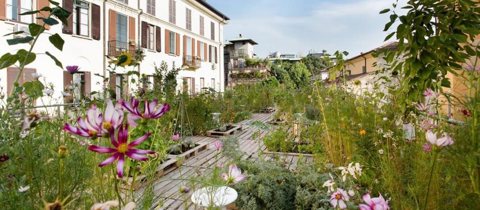 Piuarch (Італія). Город на даху