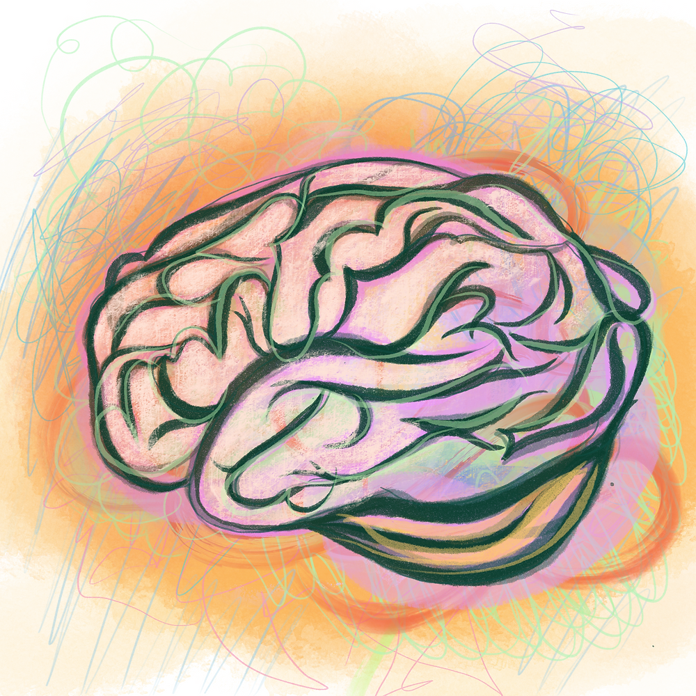 The brain processes visual cues and personal history together to make sense of art, guaranteeing that each viewer will have a unique experience. Through understanding this, researchers of art therapy hope to harness these positive or negative associations in their work.