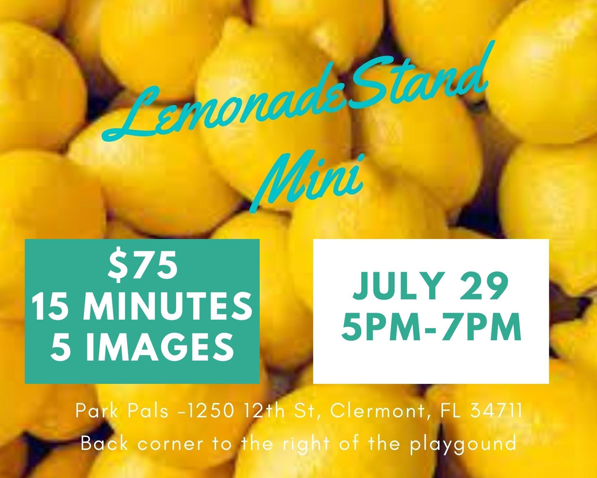 Lemonade Stand Mini