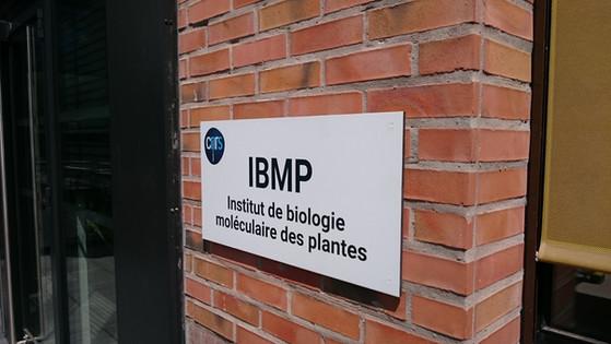 CNRS Strasbourg