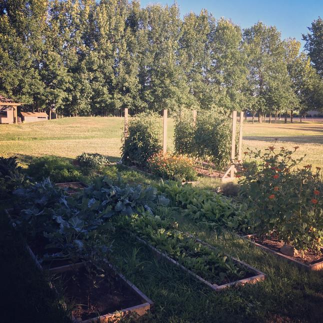 Jardineries, photographies & boréalité