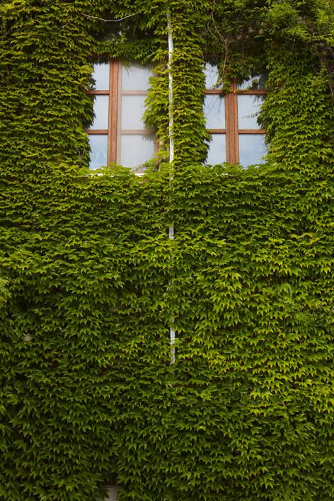 13-05-25—Wien—070.jpg