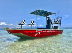 Port Douglas Reef Day Trips