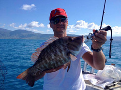 Reef Fishing Port Douglas