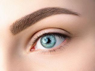 Close up view of beautiful blue female e