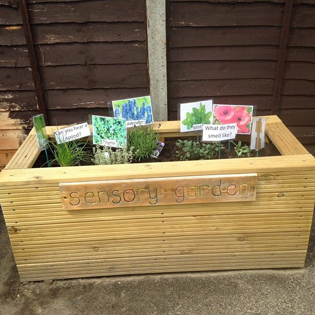 Sensory planter made for a local playgro