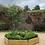 Thumbnail: Hexagon Planter
