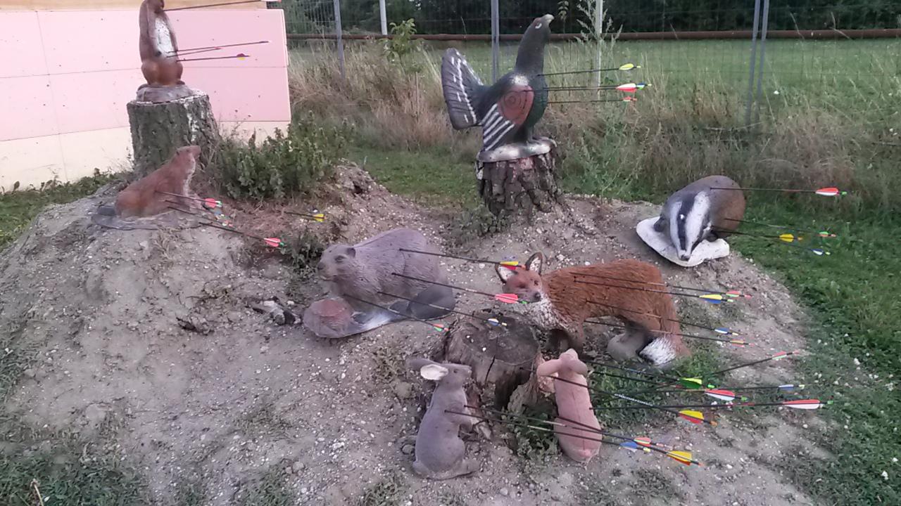 Platzierung Tiere