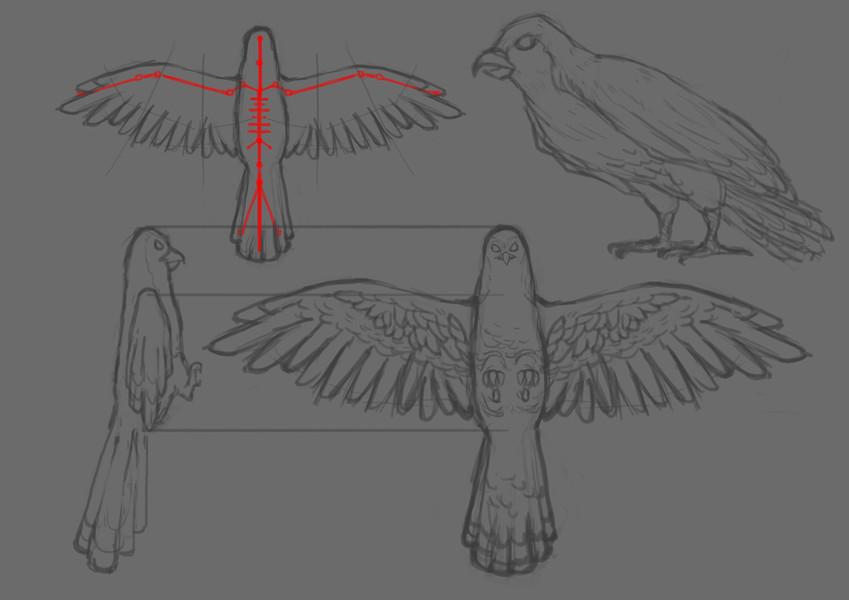 Hawk_WIP_001.jpg