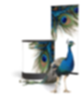 peacock with banners.png