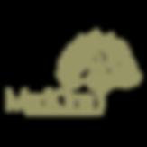 logo-medkine.png