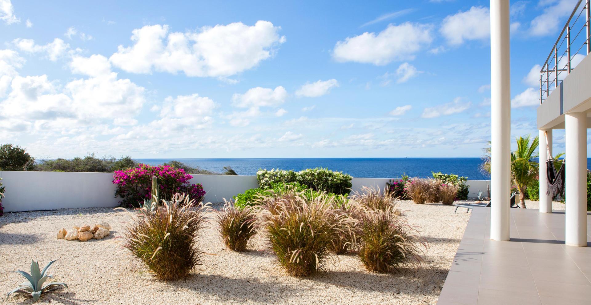 5W1A3837-Foto-Lau-Curacao-gentil-263.jpg