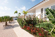 Villa Jan Thiel Pink-25.jpg