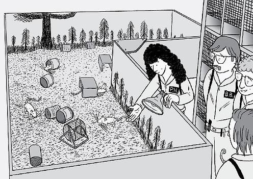 rat-park.jpg