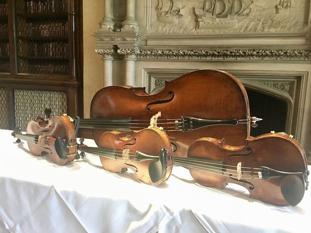 wedding, string quartet, Hampshire
