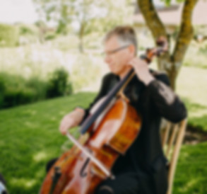 wedding, string quartet, Hampshire