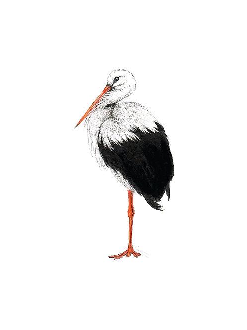 Stork on A6 Card