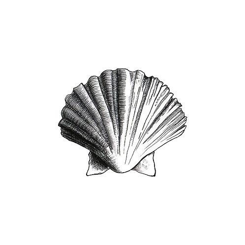 Shell We...? Mug