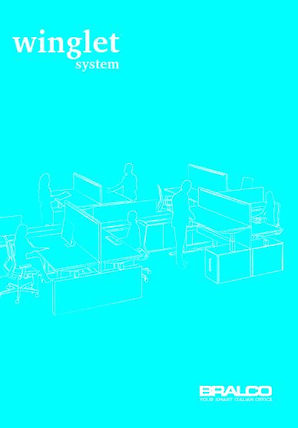 Bralco_Winglet(Cover).JPG