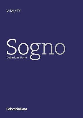 Vitalyty_Sogno_Notte_2020-2021.JPG