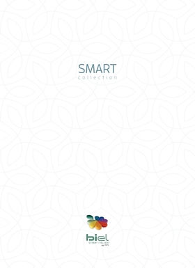 Biel Smart (Cover).jpg