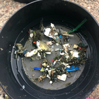 Collection of litter from the first Seabin owned by PortsToronto