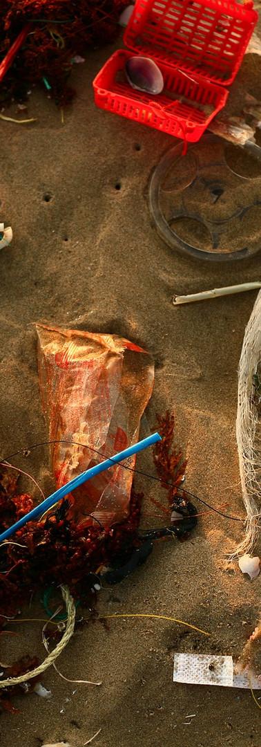 Beach Litter.jpg