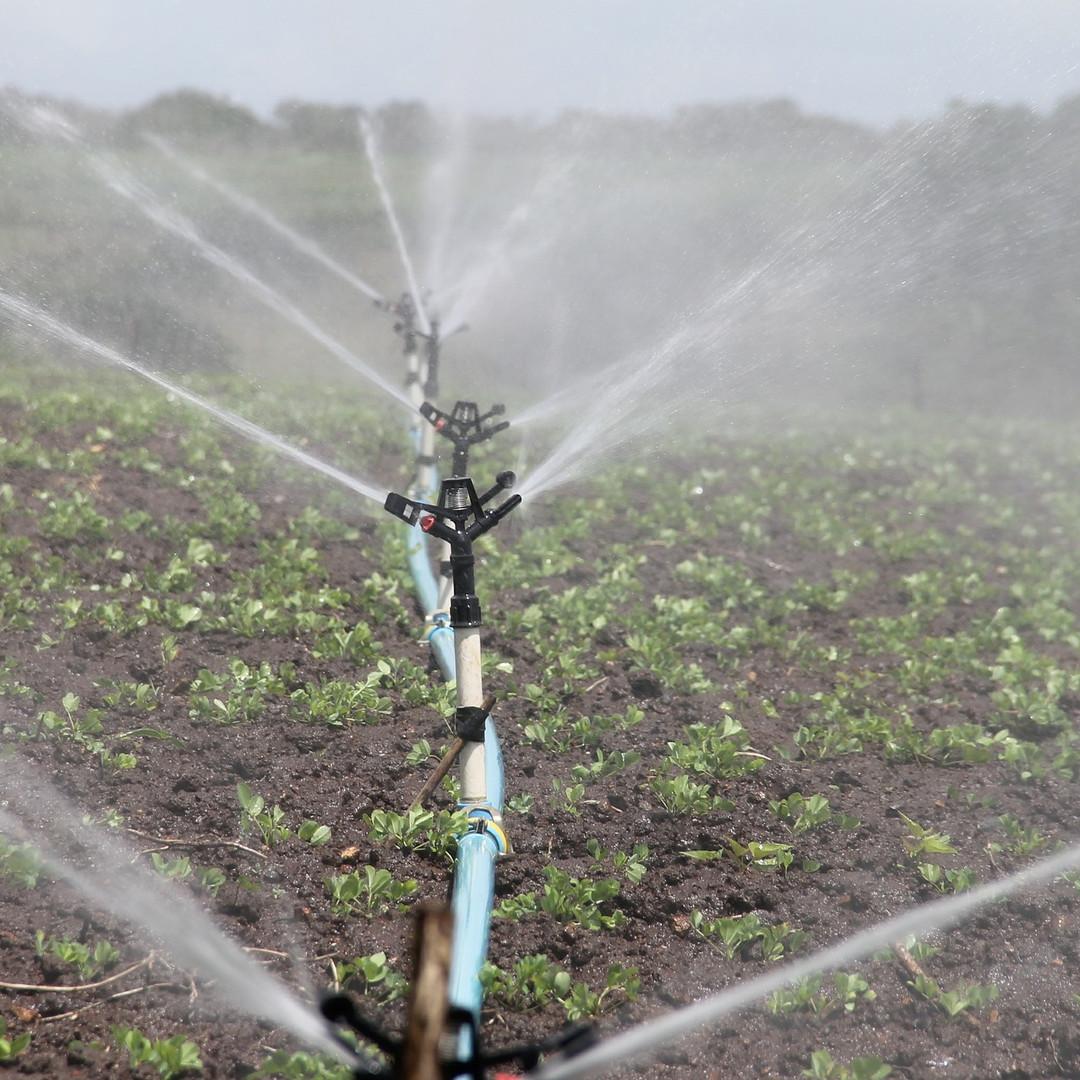 Irrigation system.jpg