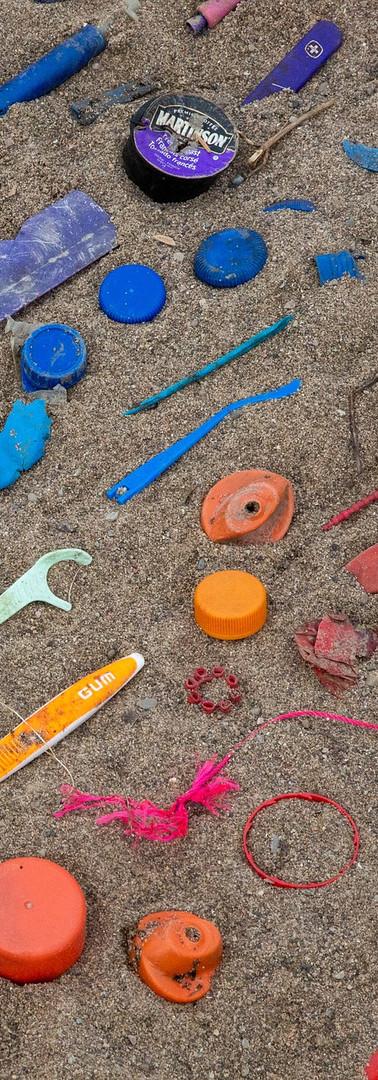 Plastic litter sorted by colour.jpg