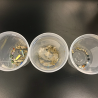 Microplastics collected from Seabins last year.