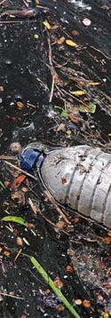 Plastic Bottle in Stormwater.jpg
