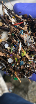 Gloved Hand holding Microplastics.png