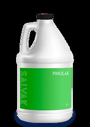 pinolmock.png