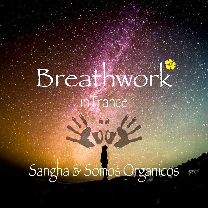 Somos Organicos - Breathwork in Trance