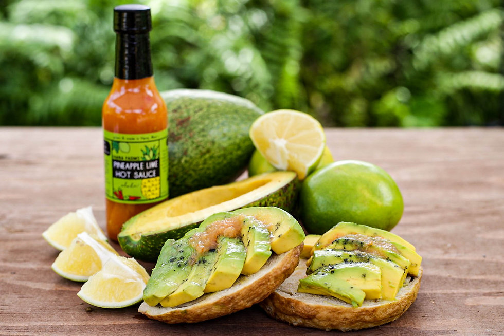 Hana Farms Bagel Topped with Pineapple Lime Hot Sauce and Avocado