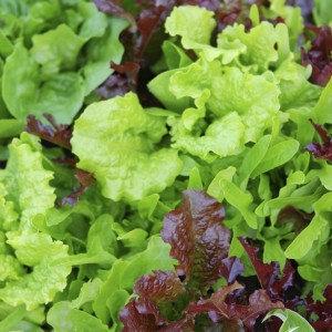 1/2 lb cut lettuce mix