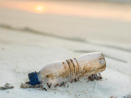 O real impacto do plástico no meio-ambiente