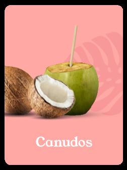 Canudos_Produtos_Terraw.png