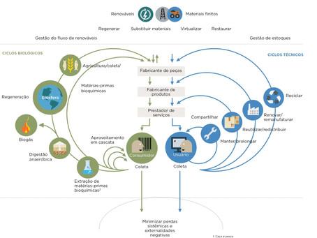 Economia linear x Economia circular