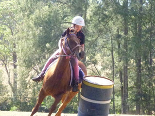 Horse Riding Camps!