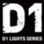 D1-RIGHTS-logo.png