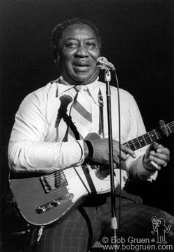 Muddy Waters 1977