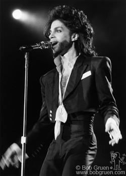Prince 1991