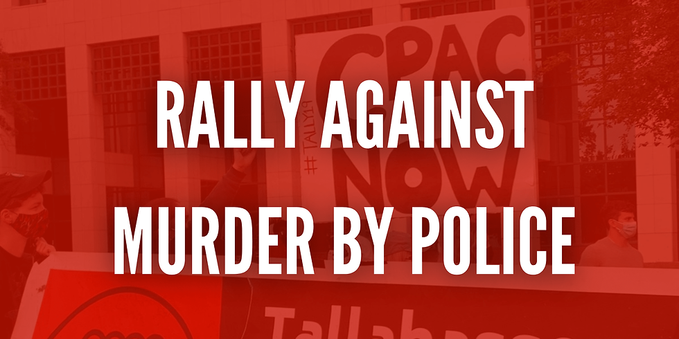 Rally Against Murder by Police