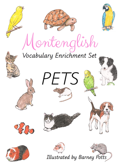 Vocabulary Enrichment Set: Pets